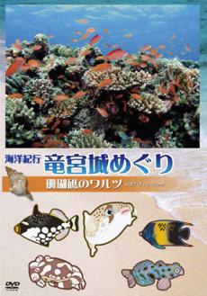 海洋紀行・竜宮城めぐり~VOL.1 珊瑚礁のワルツ