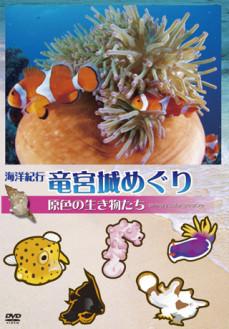 海洋紀行・竜宮城めぐり~VOL.2 原色の生き物たち