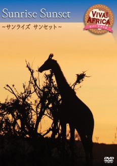 ビバ!アフリカ VOL-2 「サンライズ サンセット」