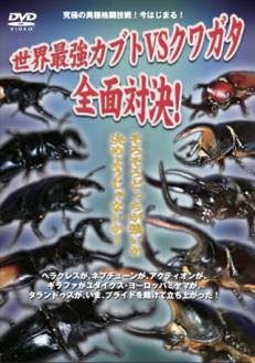 世界最強虫王決定戦 世界最強カブトvsクワガタ~全面対決!~