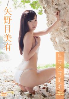 矢野目美有/トキメキ美有【2015/10/23発売 サンプル有】